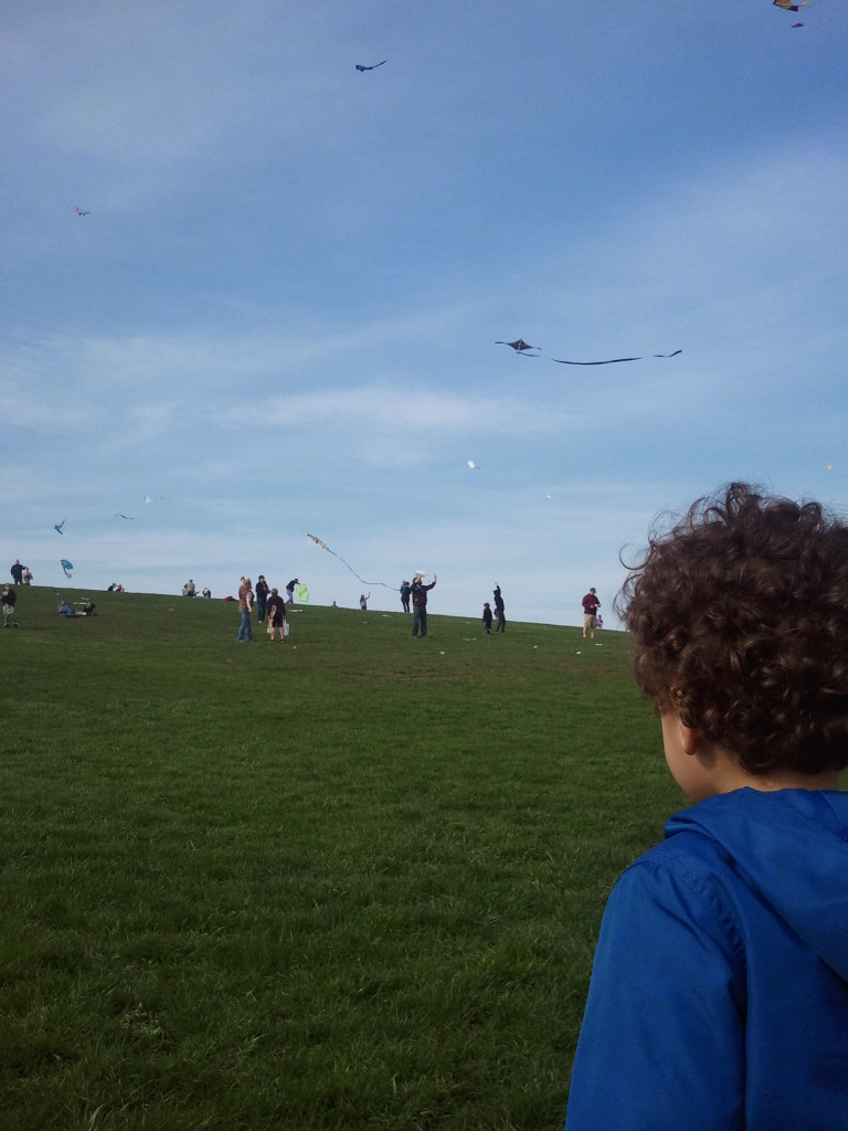 Kites at Lincoln Park