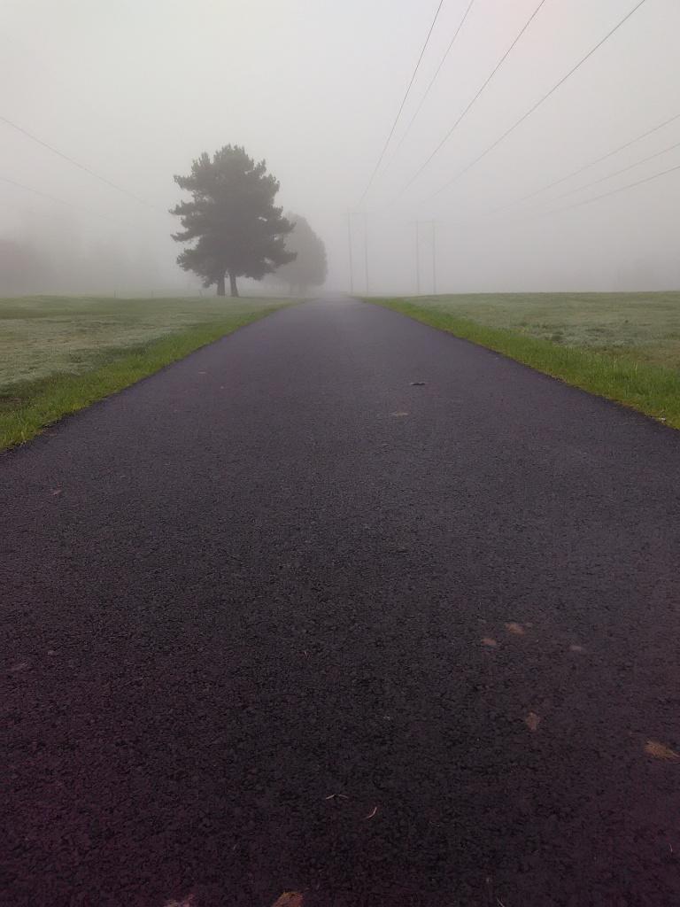 I really enjoy my morning walks.