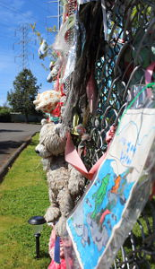 Scores of soggy and sun-bleached stuffed animals are tied to The Wall of Hope.